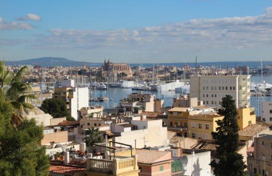 Palma: Schöne Doppelhaushälfte zum Erstbezug nach Kernsanierung im Stadtviertel El Terreno zu verkaufen
